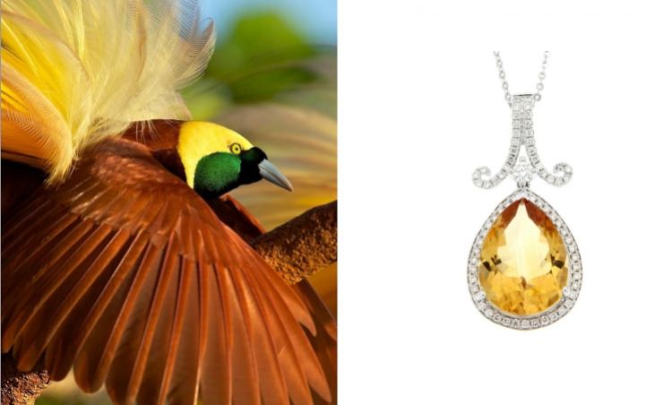 Birds of Paradise – The opulent new jewellery collection created by Hinna Azeem